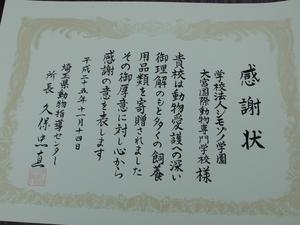 DSCF0430.JPG