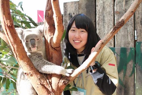 zoo-koalao.jpg