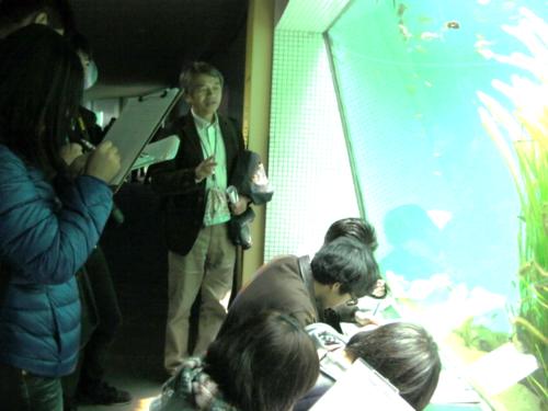 水族館4.png