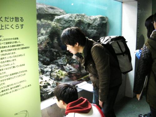 水族館3.png