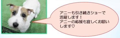 ラルフ応援3.JPG