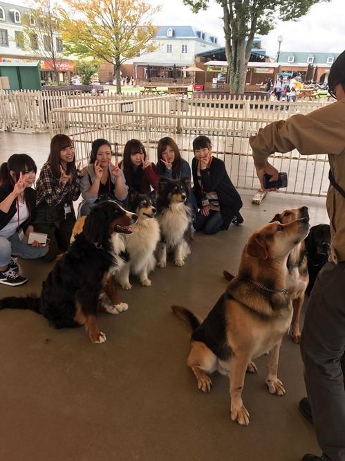 動物施設2018⑪.JPG